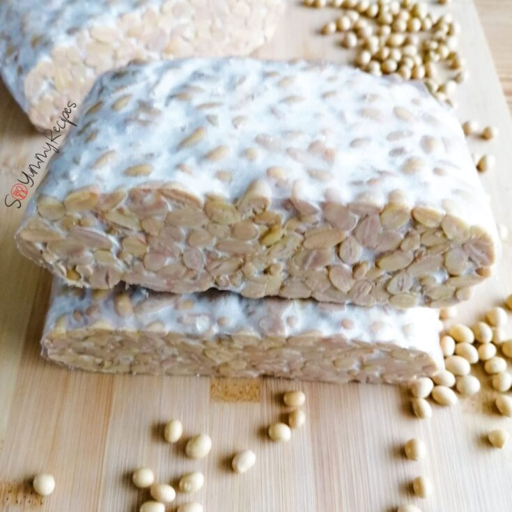 tempeh blocks with some soya beans around